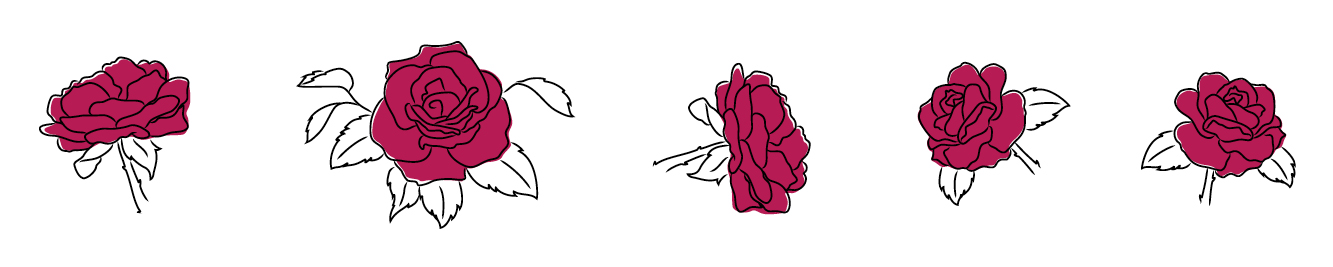 Illustration of roses