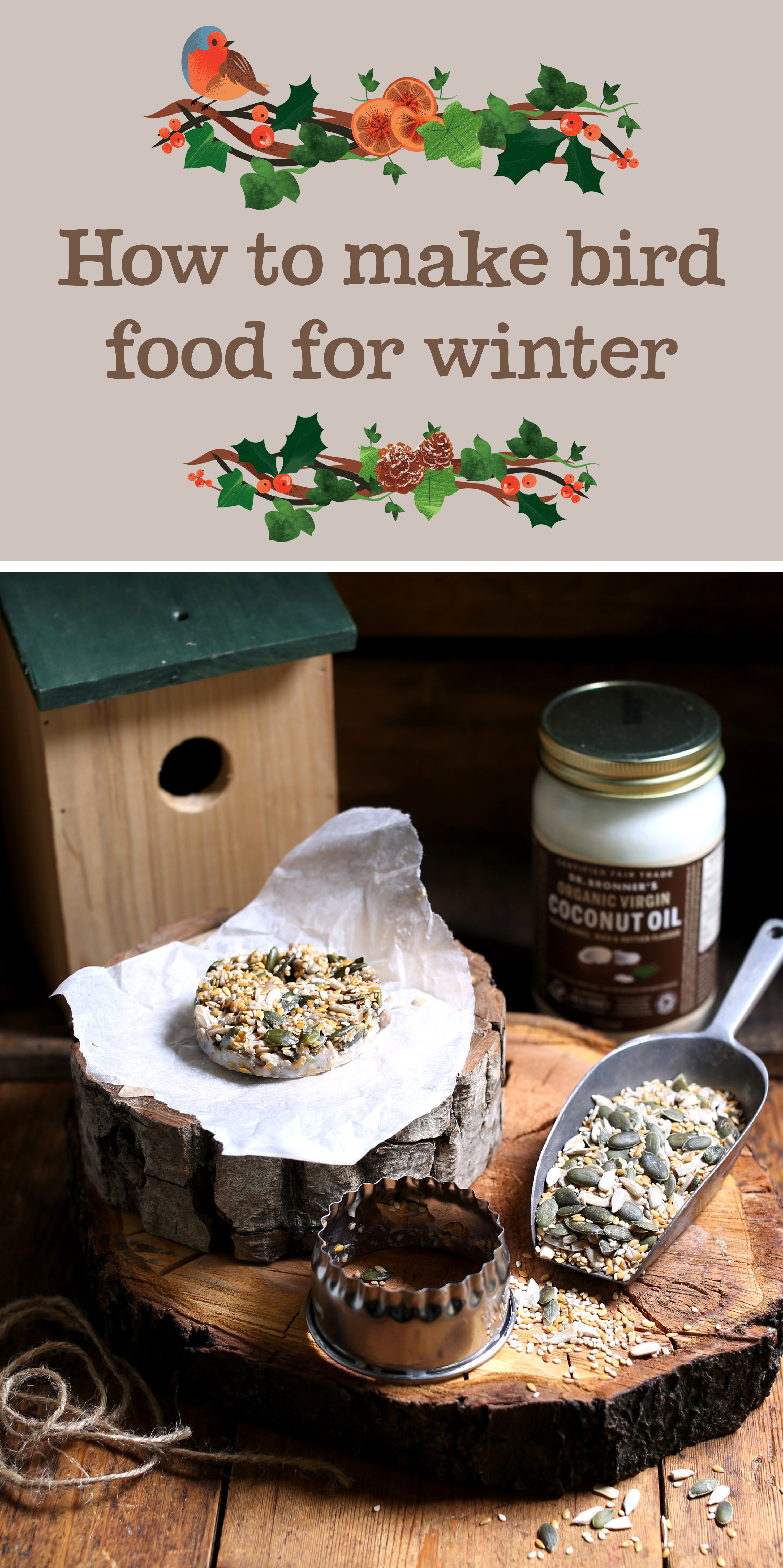 How to make bird food for winter