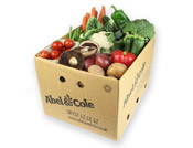 Organic Large Veg Box