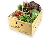 Organic Medium Gourmet Box