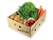 Organic Small Veg Box