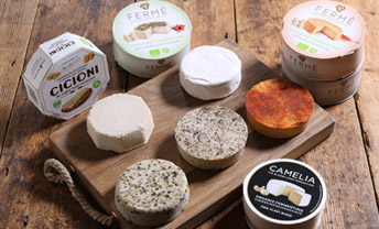 Try our newest nut-based vegan cheeses