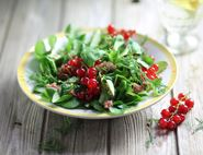 Swedish Redcurrant Salad