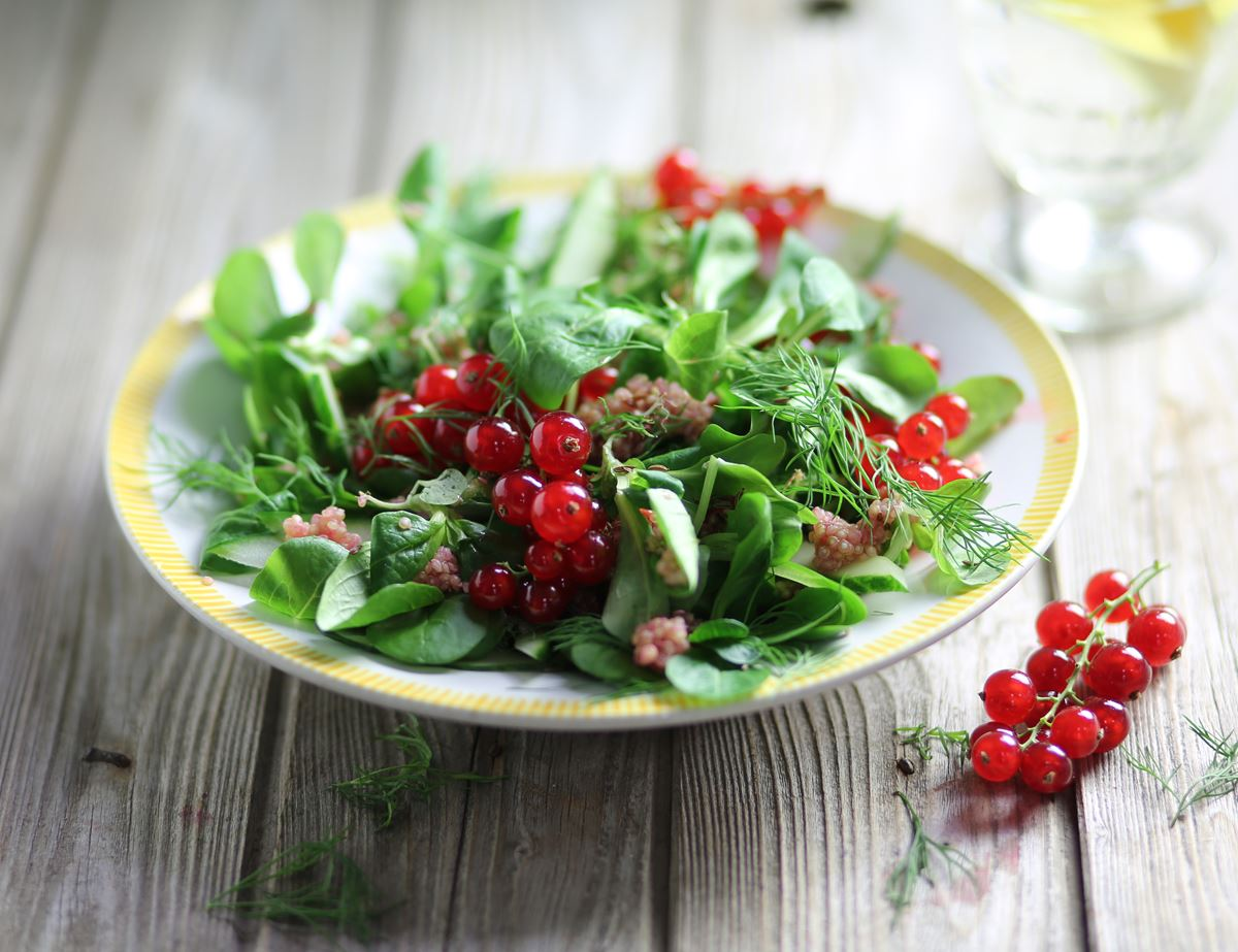 Swedish Popping Redcurrant Salad