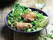 Summer Braised Chicken, Broad Beans & Lettuce