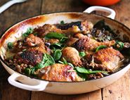 Braised Chicken with Mushrooms & Lentils