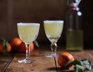 Clementine Gin Sour