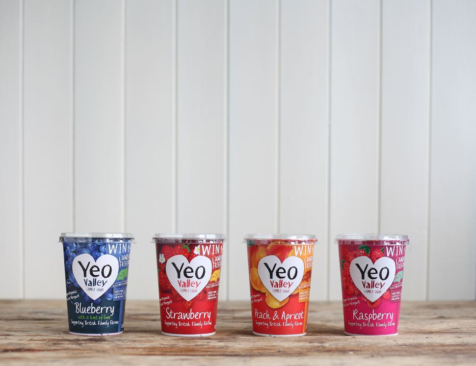Strawberry Yogurt, Organic, Yeo Valley (450g)